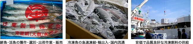 水産物流事業